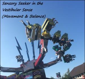 Vestibular Sensory Seeker - Movement and balance