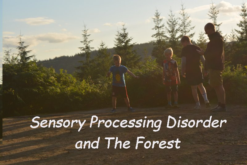 Why a trip to The Forest is good for those with Sensory Processing Disorder