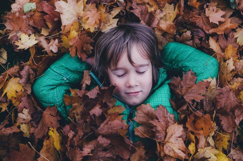 sleeping in leaves