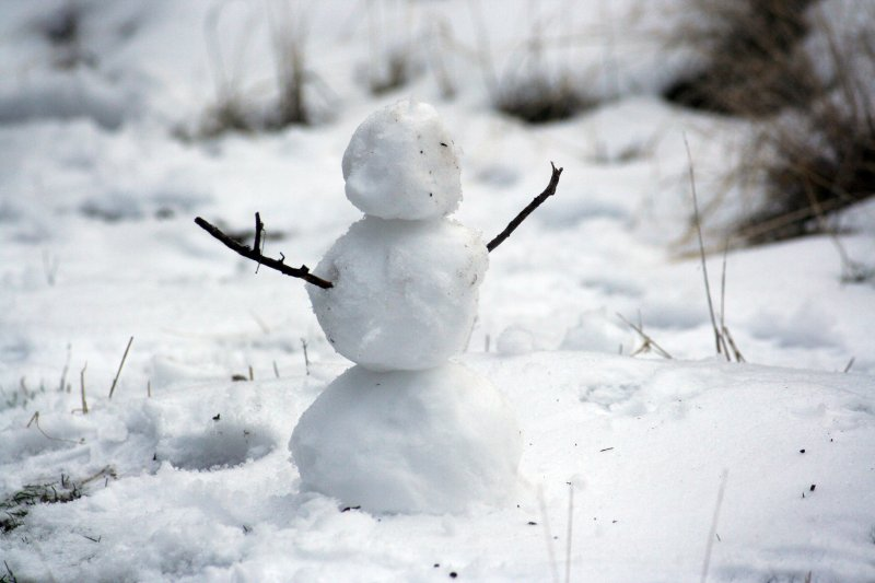 nowman Nathan Wolfe